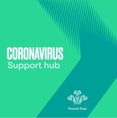 Princes Trust Support Hub